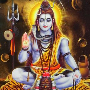 Prayers, flowers and abhishekam to Lord Shiva